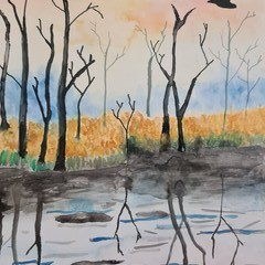 Original watercolour Finnish reflecting water