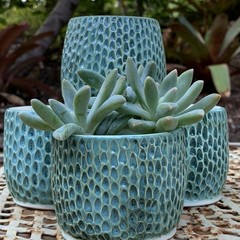 Carved Turquoise Planter