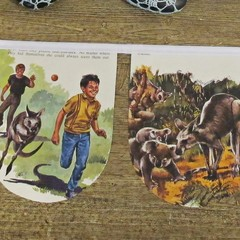 Skippy The Kangaroo Birthday Bunting Bush Australiana Children Garland Nursery