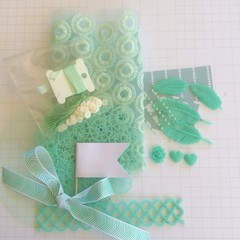 Bulk Colour kit, scrapbooking supplies, mint scrap, embellishments for scrapping