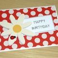 Happy Birthday card -  ladybug