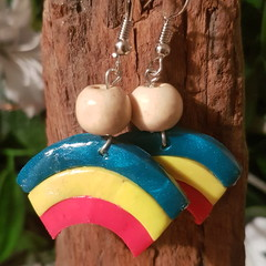 'Rainbow Earrings'
