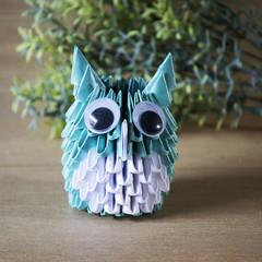 3D Origami Owl DIY Kit