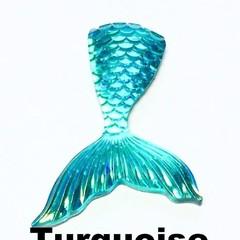 Needle Minder - Mermaid Tails