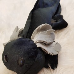 Midnight the axolotl softie