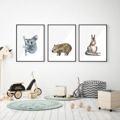 Australian Animals Illustration for Children Koala Wombat Kangaroo Download