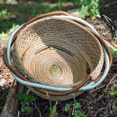 "Handwoven Pine Needle Spiritual Healing Basket ~ ""Northern Rainforest"""