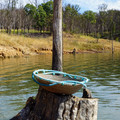 "Handwoven Pine Needle Spiritual Healing Basket ~ ""Spring Overture"""