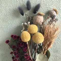 Wild Country - Dry bouquet - Dried & preserved flowers - 36cm - Natural - Poppy
