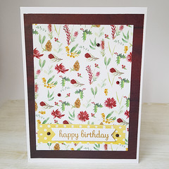 Happy Birthday, Australian Native Plants, Birthday Card