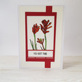 You Got This, Encouragement Card, Friendship Card, Kangaroo Paw