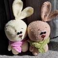 Mr. & Ms. Bunny