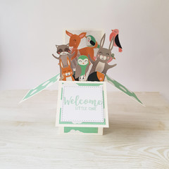 Welcome Little One, Woodland Card, New Baby Card, Pop Up Box Card