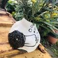 Platypus  pod vase