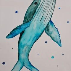 Original blue whale watercolour