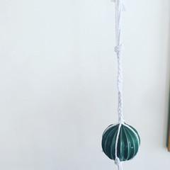Cactus macrame hanging decor
