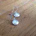 Shell Earrings  in Recycled Silver