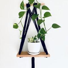 Black lace plant hanger