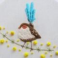 DIY Kit Sophie the wren