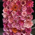 Paper Flower Wall (2.3m high) x (2.5m wide )made to order custom made/wedding