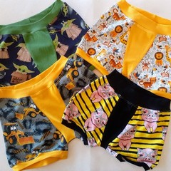 Mystery littles boxers size 2-6