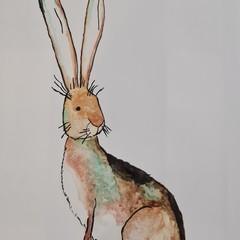 Original watercolour of hare