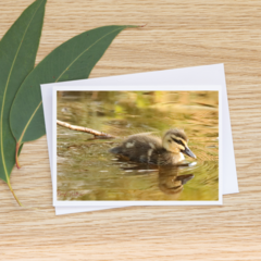 Golden Duckling -  Photographic Card #10