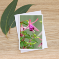 Fuchsia - Photographic Card #19