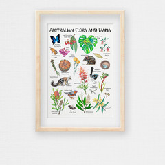 Australian Flora and Fauna Illustration, Botanical Print