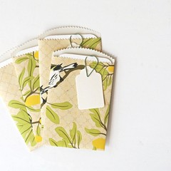 Paper Pockets {4w cards + tags} | Floral Bird Notesets | Paper Gift under 10