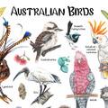 Australian Birds  Poster, Kids Wildlife Resource