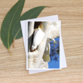 Sulphur-Crested Cockatoos Building a Nest -  Photographic Card #6