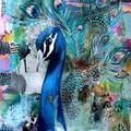 Eva The Peacock