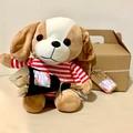 French Kiss - Gift box - Mini dried bouquet + dog plush - Baby shower, birthday