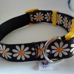 Black and white daisy adjustable dog collar