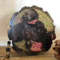 Wood slice pet portrait, Free Shipping, pet keepsake, custom rustic wood gift