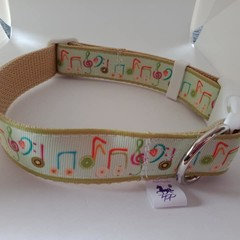 Music note print adjustable dog collars