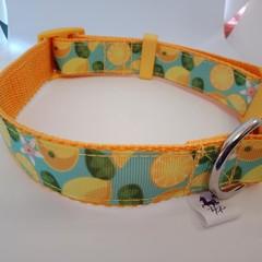 Lemon / citrus print adjustable dog collars