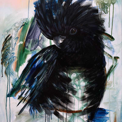 Vincent the Glossy Black Cockatoo Print