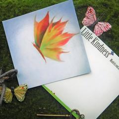 Autumn Flight    Post card