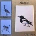 Australian Bird Collection
