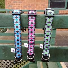 Bright triangle print adjustable dog collars
