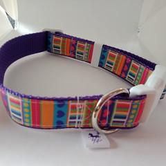 Bright geometric print adjustable dog collars