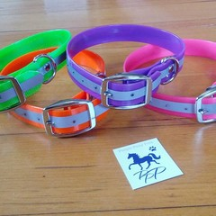 Australian made reflective high visibility dog collars