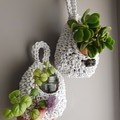 Crystal Plant Pod - Made to Order