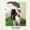 Nisse / Gnome - 'Cino' - 28cm - FREE SHIPPING