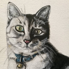 Canvas pet portrait