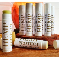 THE BODHI TREE: HEMP PROTECT Organic Lip Care Vegan Lip Balm