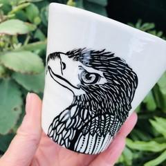 Hawk cup