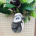 Kookaburra wall vase